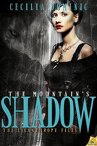 the-mountains-shadow